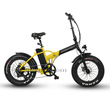 High Quality 20 Inch Hub Motor Folding Electric Bike for Sale