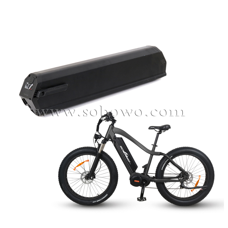 Rechargeable Dorado Lithium Battery for Electric Bikes/E-trikes