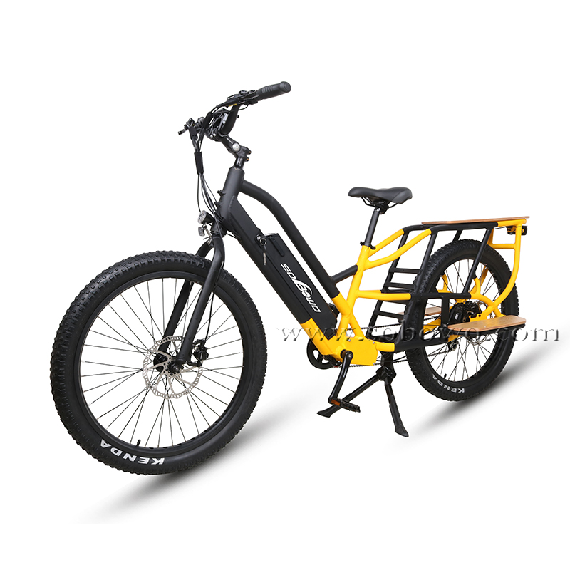 Model C19-1 Dual Batteries Long Range Fat Tire Electric Cargo E Bike